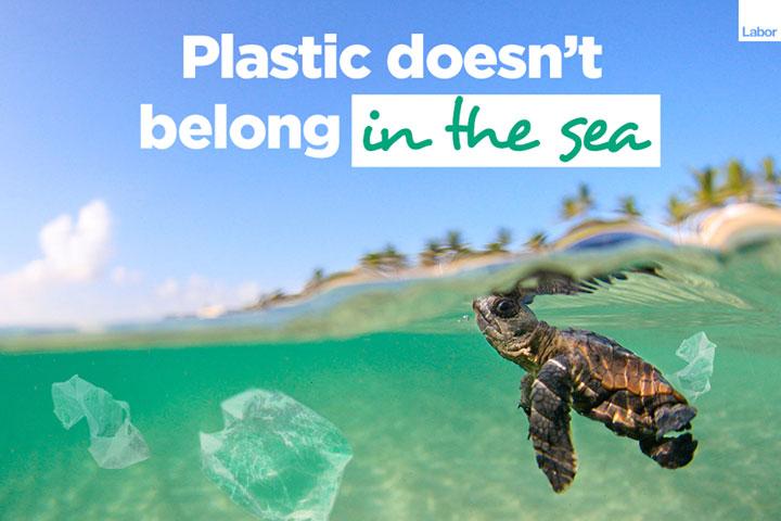 ALP-Plastic-bag.jpg