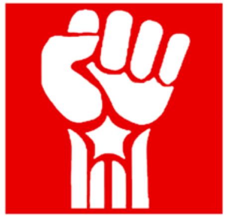 Joventut Socialist de Catalunya - JSC