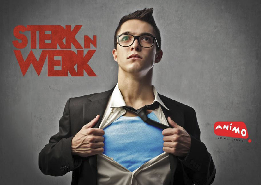 Sterkt n werk - European Youth Guarantee - Animo