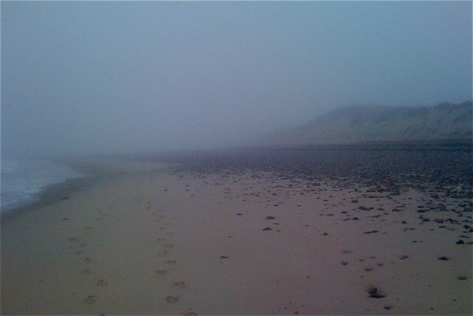 Cold Stun's beach