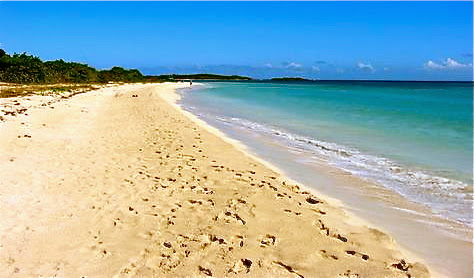 Lonely La Chiva was #1 on Trip Advisor among Vieques attractions.