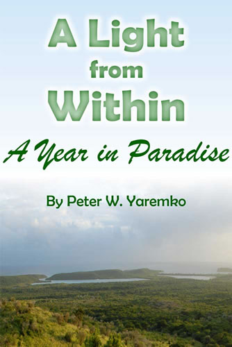 A Light from Within Book Cover