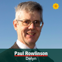 Paul Rowlinson - Delyn