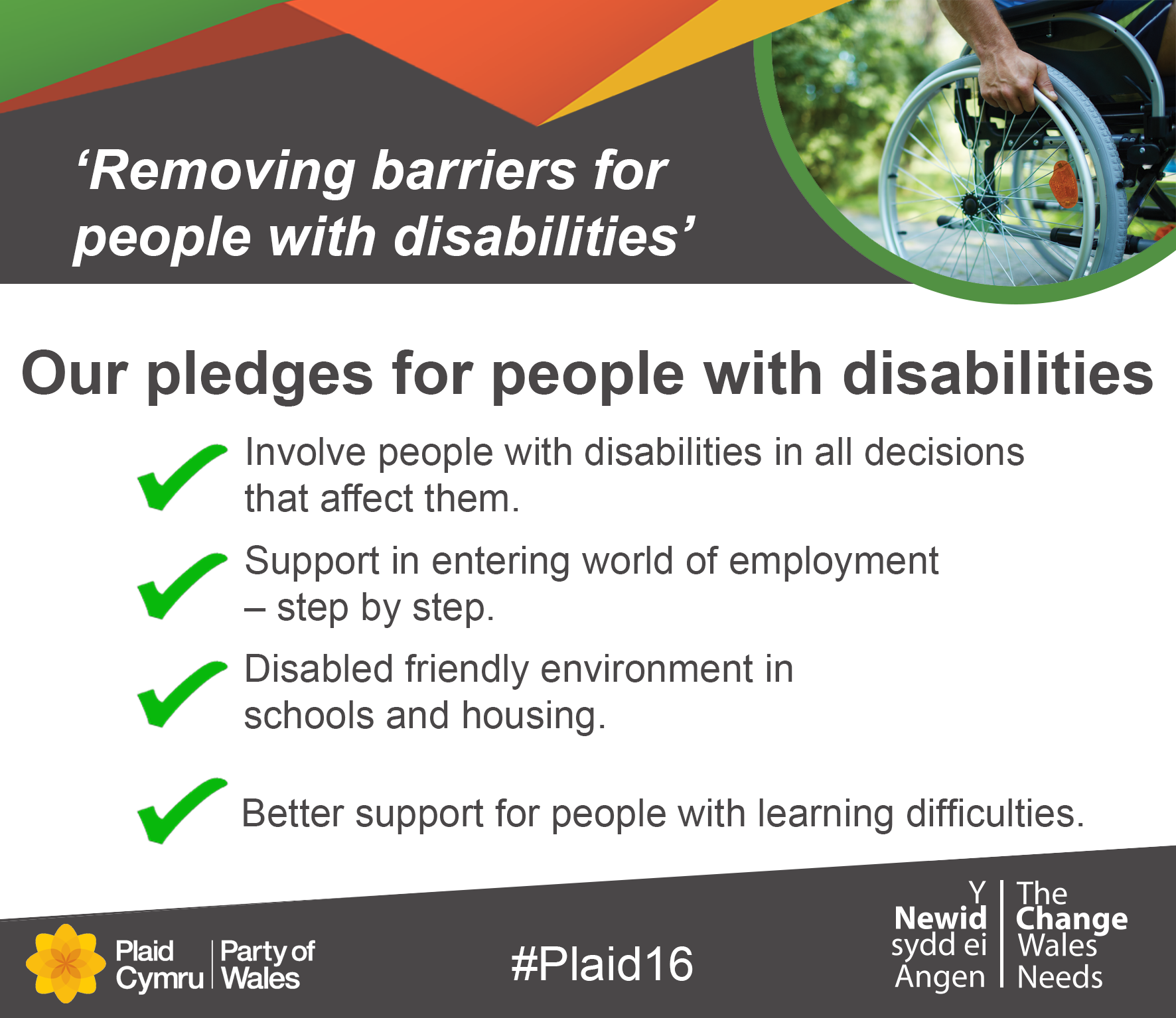 Disabilities_Pledges.png