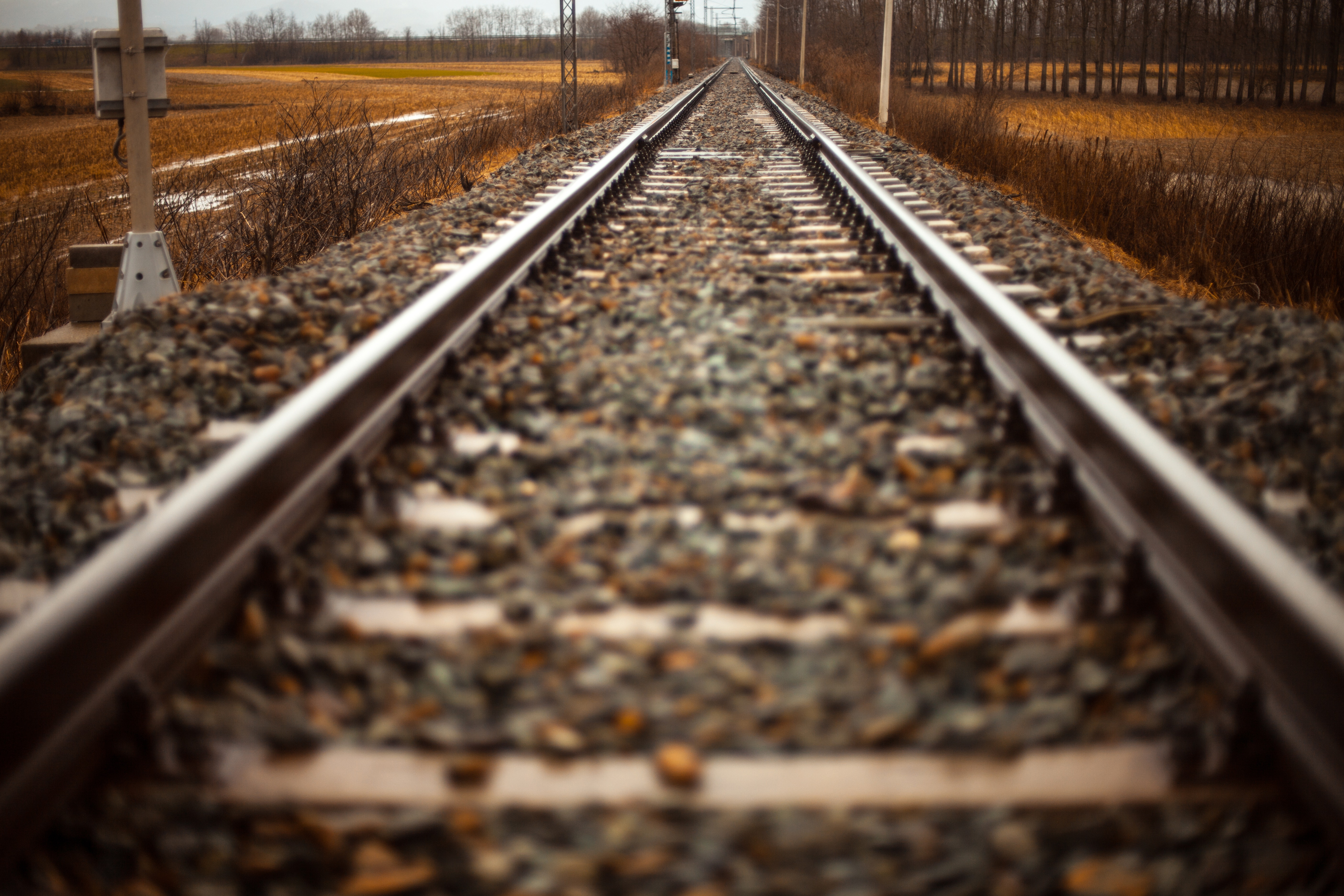 path-railroad-rails-1425.jpg