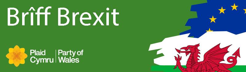 Brexit-Briefing-Cymraeg.png