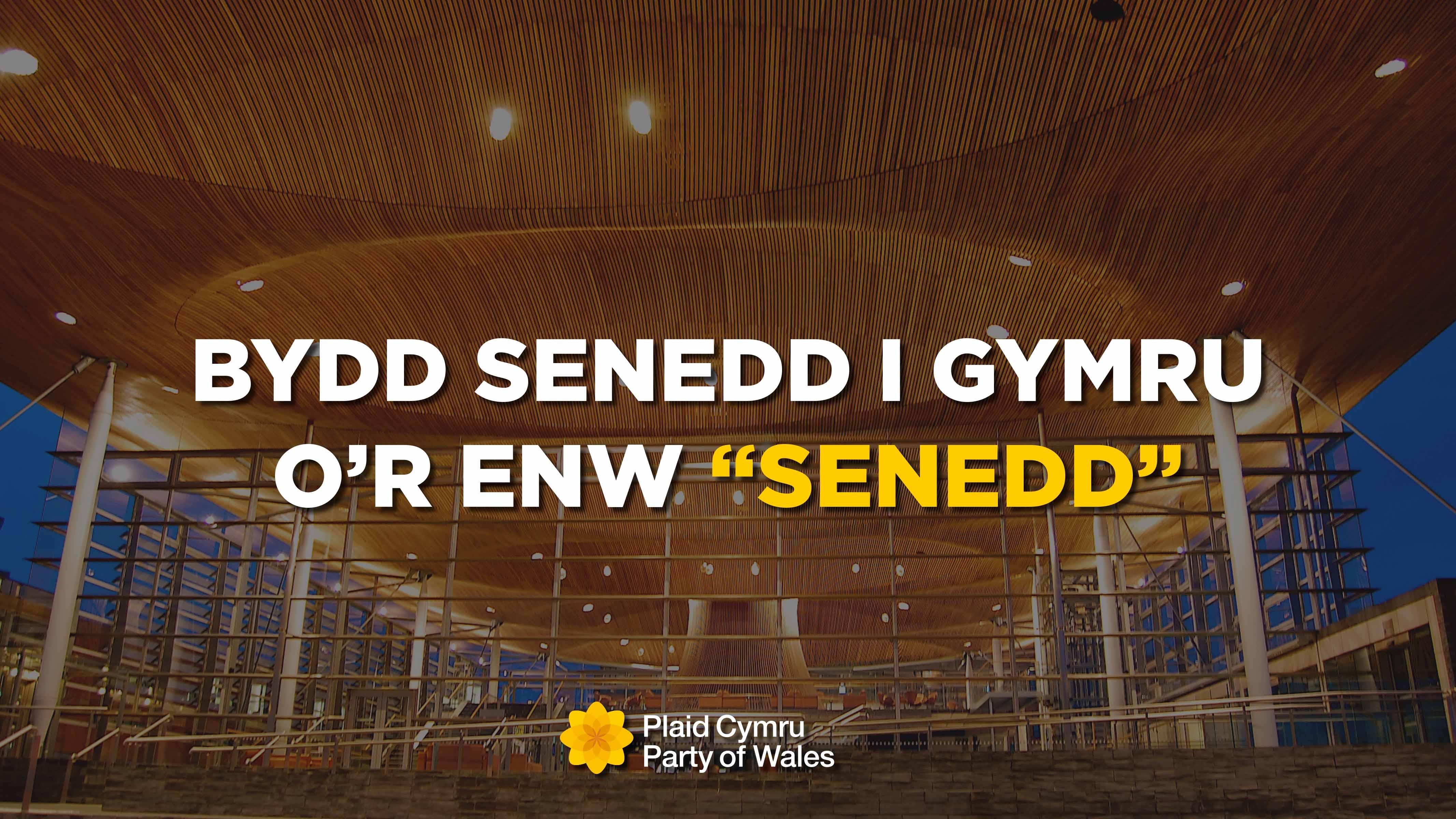 081019_Senedd_Enw-1.jpg