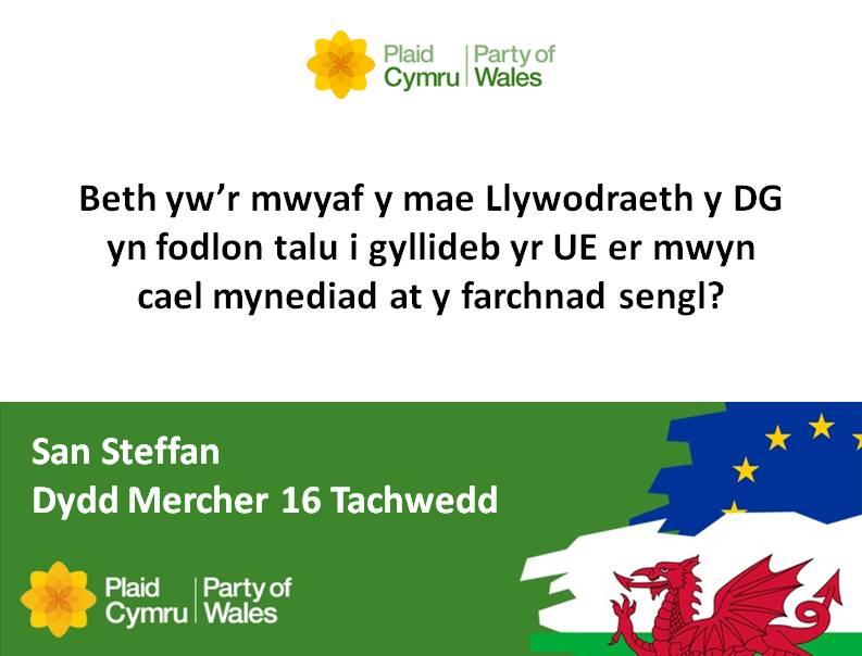 8_16.11.16_-_Westminster_-Cymraeg.jpg