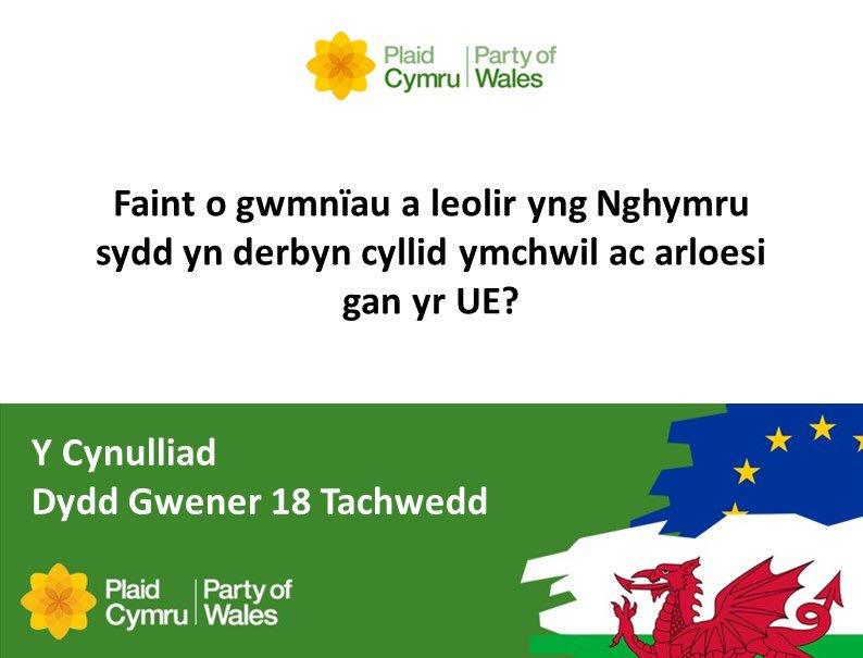 10_18.11.16_-_Assembly-Cymraeg.jpg