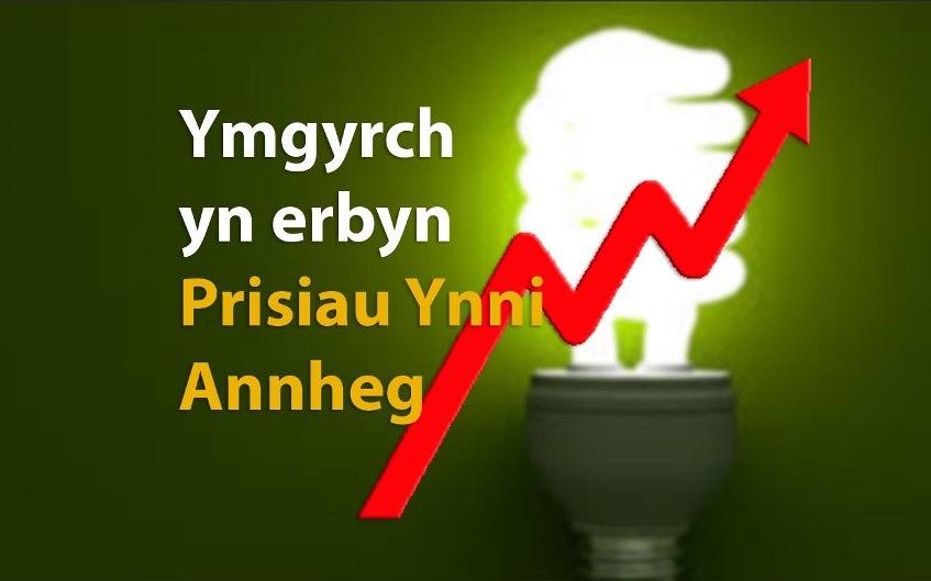 Bulb_4_CYM_Geraint.jpg