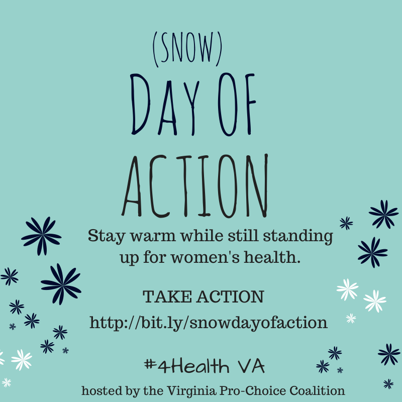 Snow_Day_of_Action.png