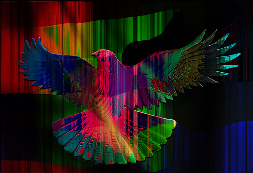 Peace dove, coloured in rainbow hues.