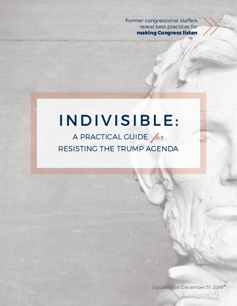 IndivisibleGuide-1.jpg