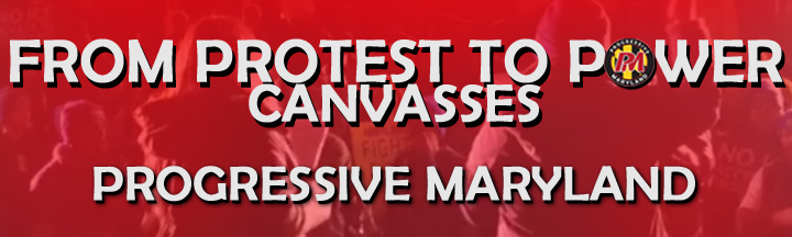 2018ProtestToPowerCanvassesbanner.jpg