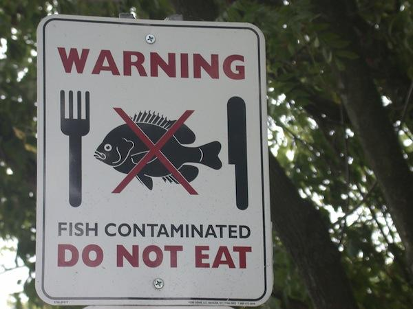 fish_advisory_washington_state-courtesy_epa.jpg
