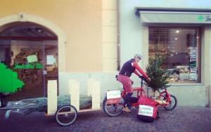 Transport de sapins par vélocité Valais à Sion!