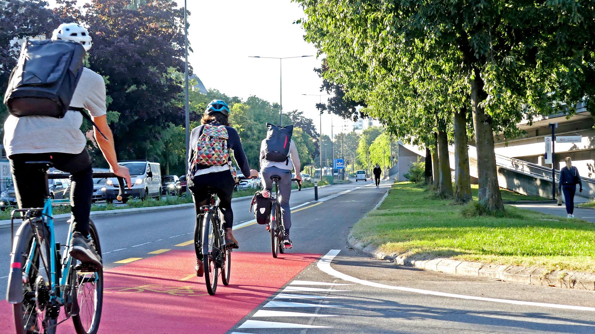 La piste cyclable du futur