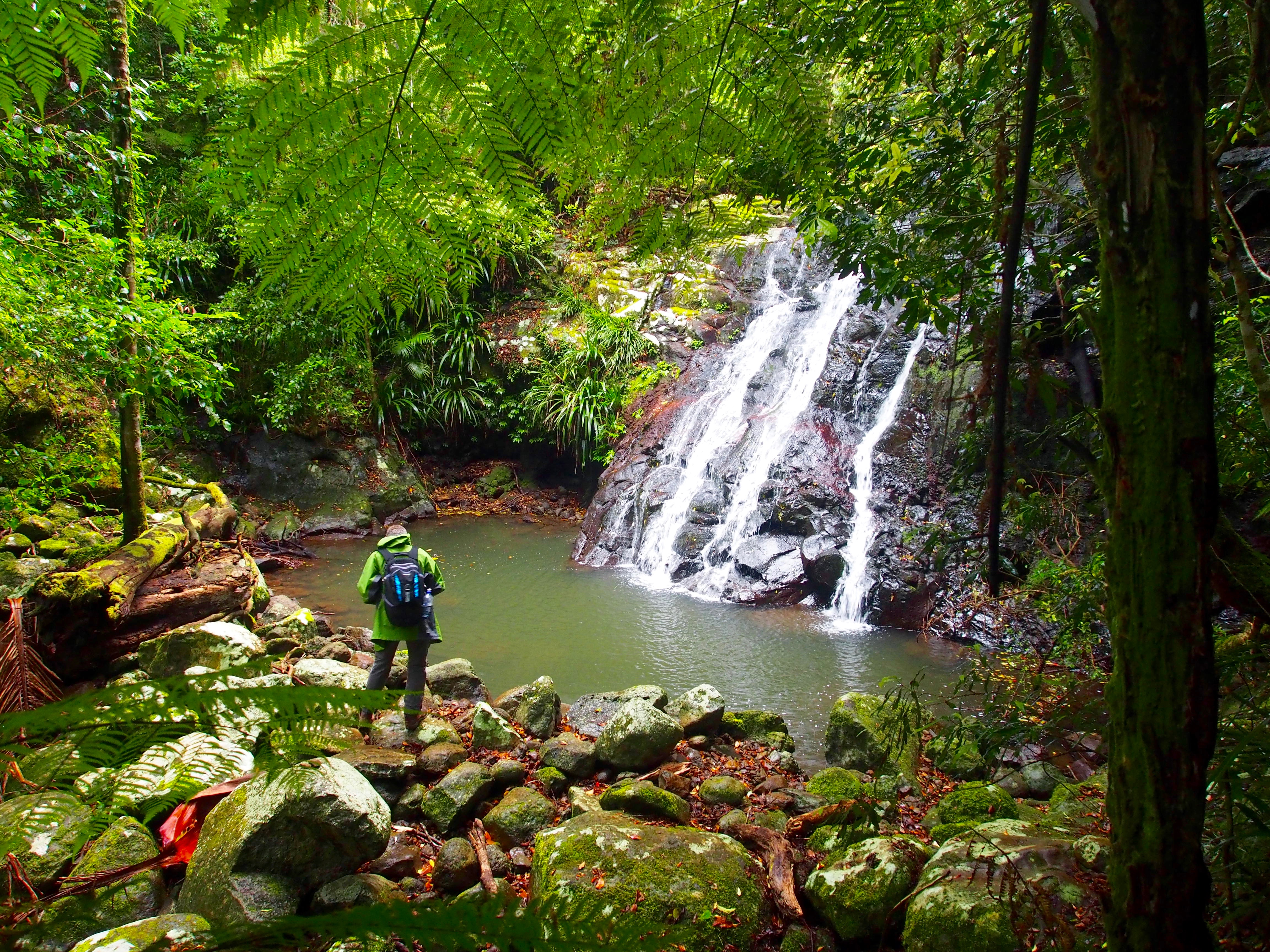 Kagoonya Falls, Lamington National Park