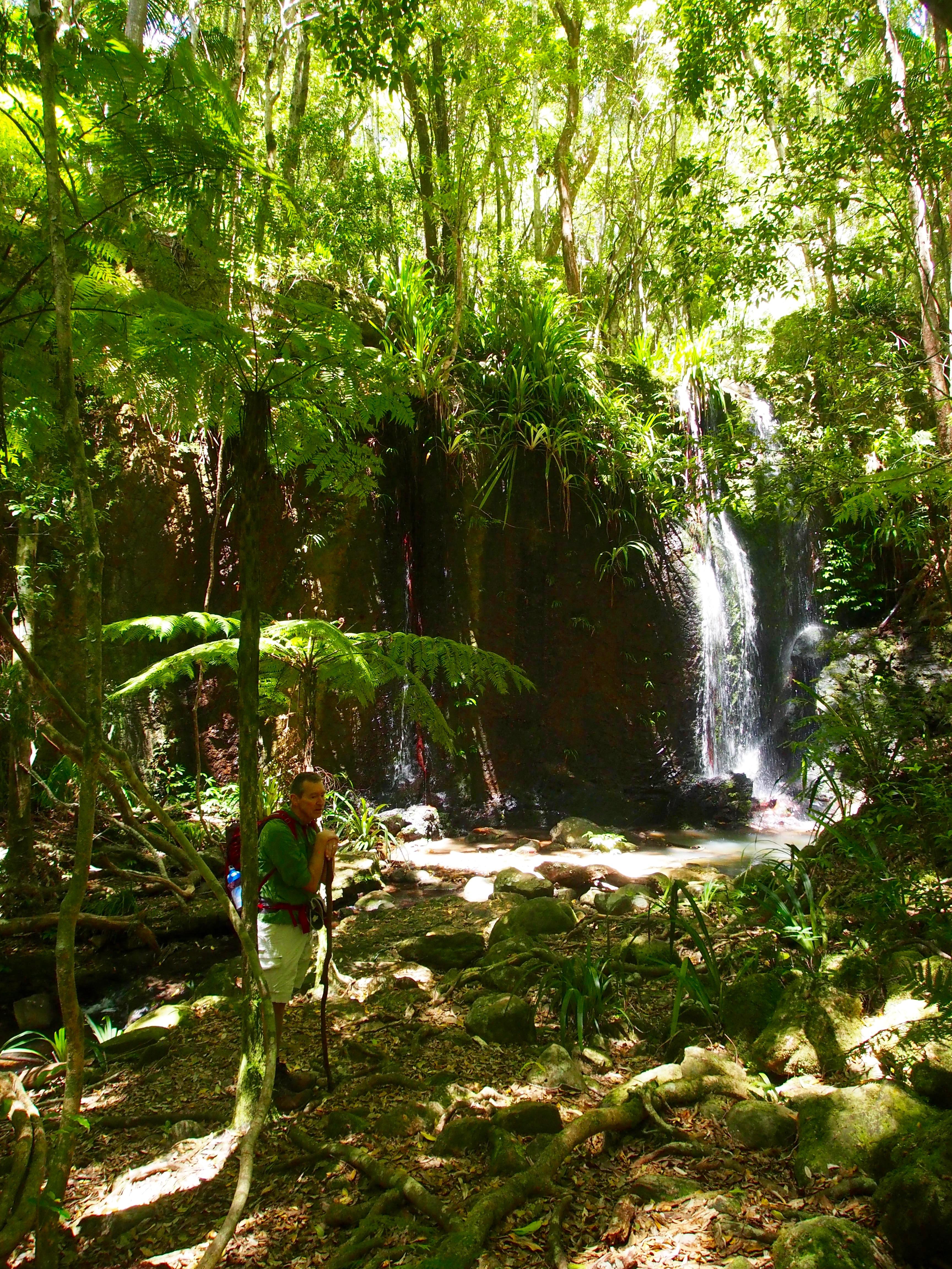 Nagarigoon Falls, Lamington National Park