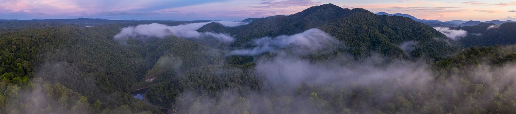 Queensland's National Parks Need Funding
