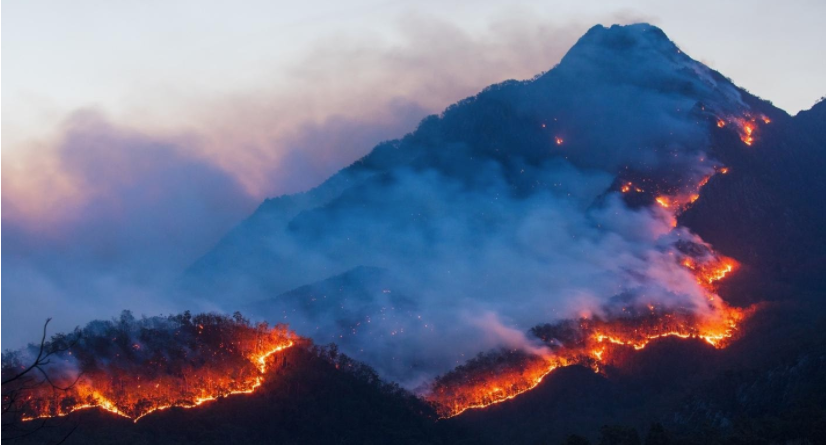 Mount Barney, part of the Gondwana Rainforests World Heritage Area, burning in September 2019. Photo: Ben Blanche