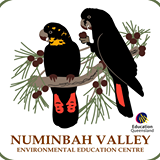 Numinbah Valley Environmental Education Centre
