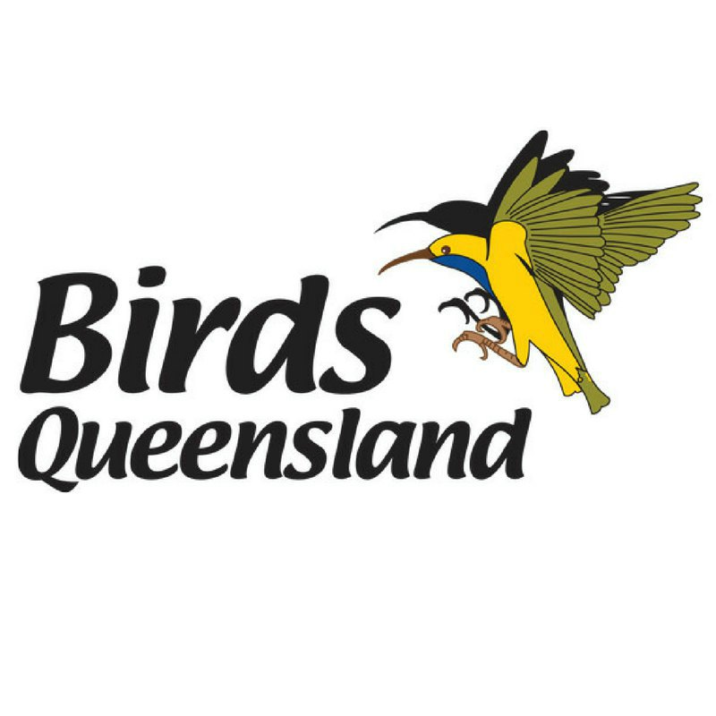 Birds Queensland