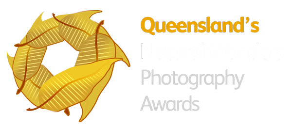 Queensland's Natural Wonders Photography Awards