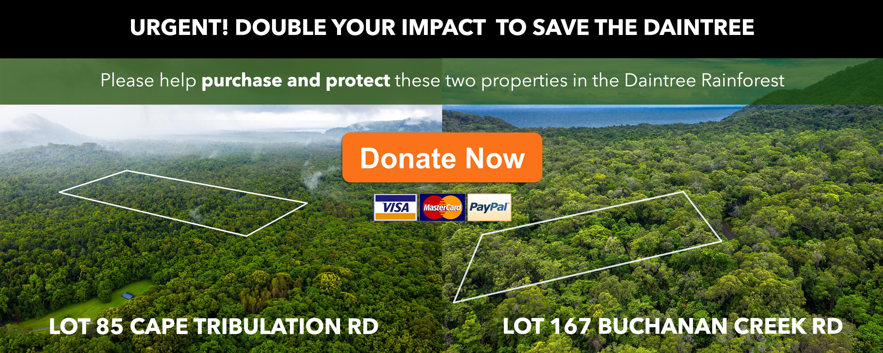 Save the Daintree Appeal