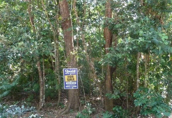 Lot 124 Quandong Road in the Daintree Rainforest