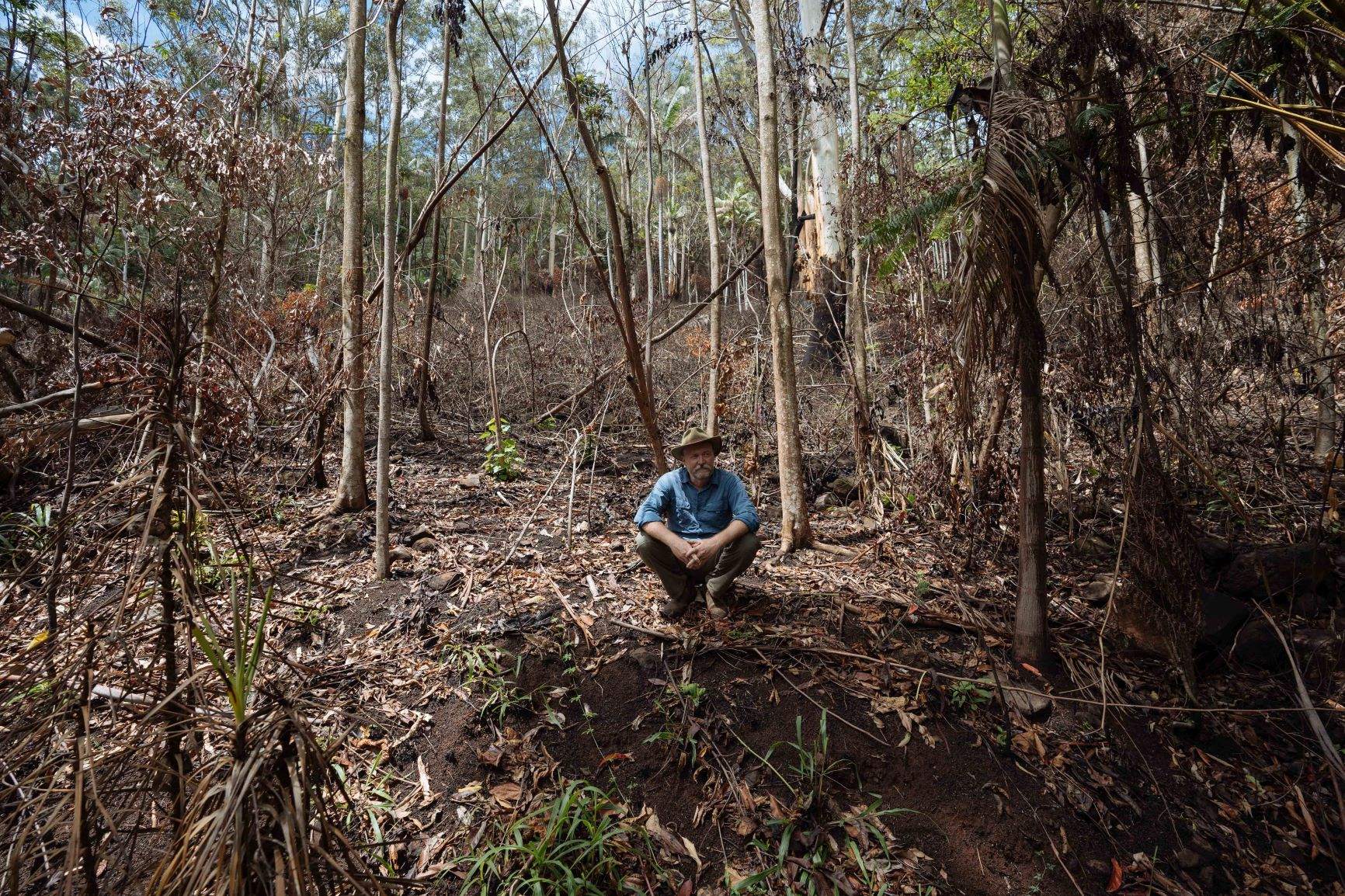 Kelvin Davies and burnt rainforest in NSW