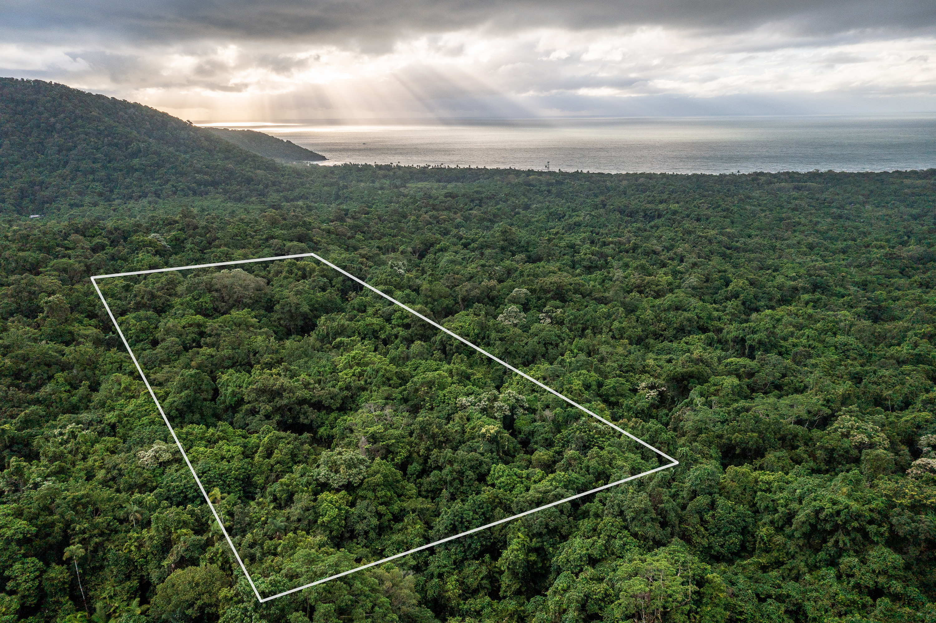 Lot 21 Camelot Close in the Daintree Lowland Rainforest