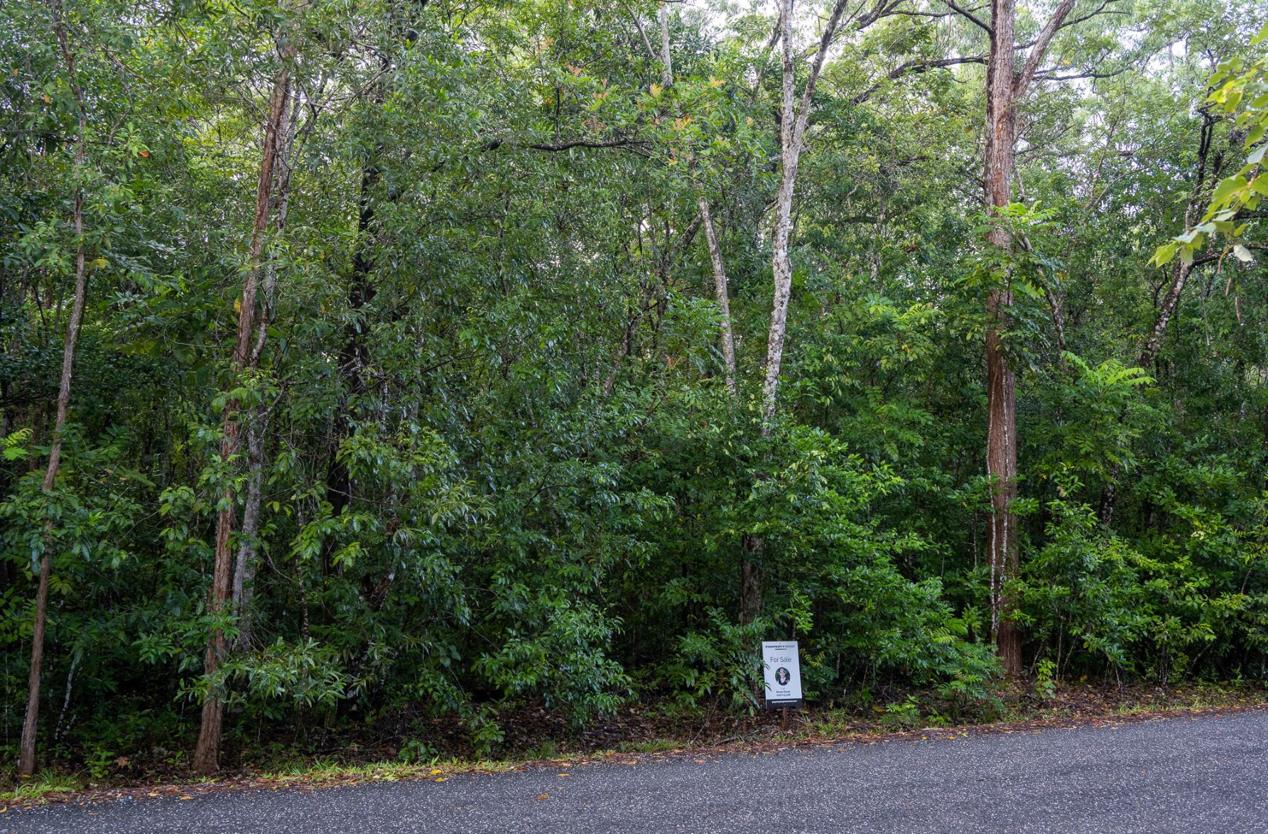 Lot 176 Quandong Road, Cow Bay