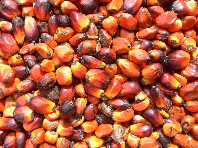 Palm nuts by Flickr user oneVillage Initiative