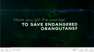 DeforestACTION Video Screenshot