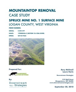 The Cover of Downstream Strategies report on Spruce Mine's ecological impacts