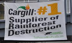 Cargill: Stop Sourcing Palm Oil from Sinar Mas!