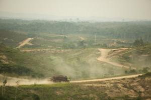 APP logging truck