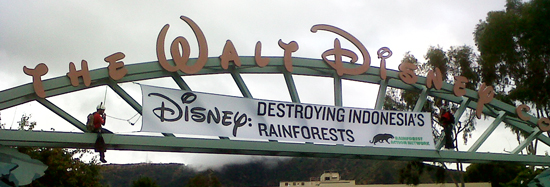 Disney: Destroying Indonesian Rainforests