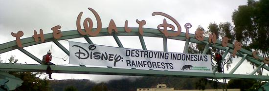 Disney: Destroying Indonesian Rainforests