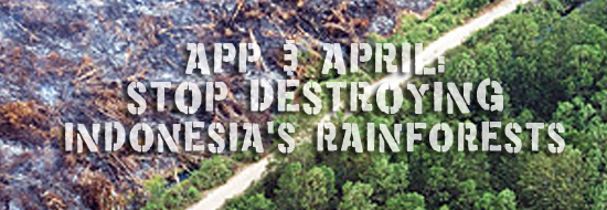 APP and APRIL: Stop destroying rainforests