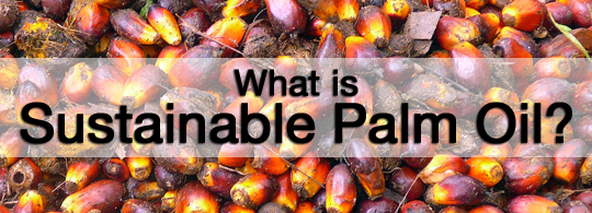 What is sustainable palm oil
