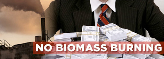 No biomass burning_540x195