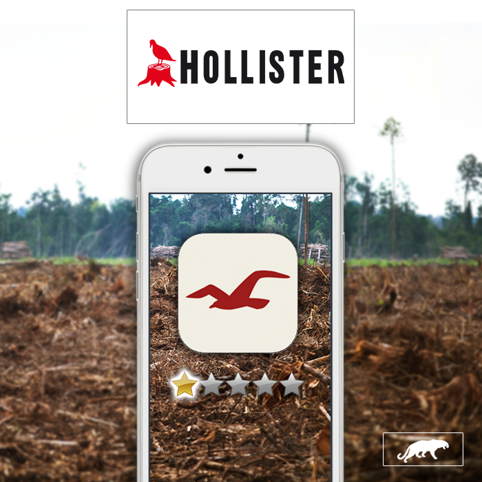Hollister App Jam
