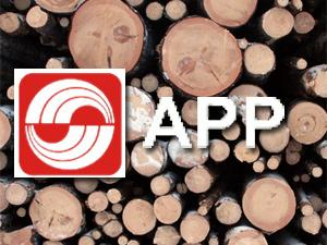 APP logo on logs