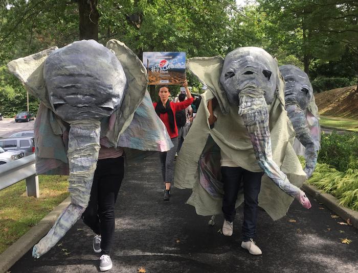 2_elephants.png