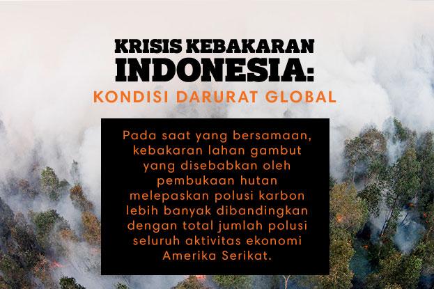 Krisis Kebakaran Indonesia: Kondisi Darurat Global. Pada saat yang bersamaan, kebakaran lahan gambut yang disebabkan oleh pembukaan hutan melepaskan polusi karbon lebih banyak dibandingkan dengan total jumlah polusi seluruh aktivitas ekonomi Amerika Serikat.