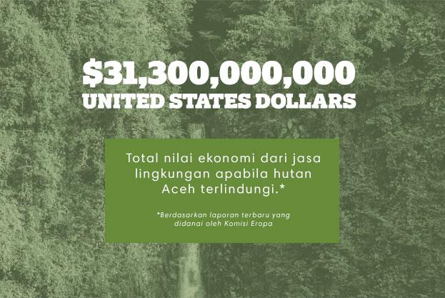 $31,300,000,000 USD: Total nilai ekonomi dari jasa lingkungan apabila hutan Aceh terlindungi.