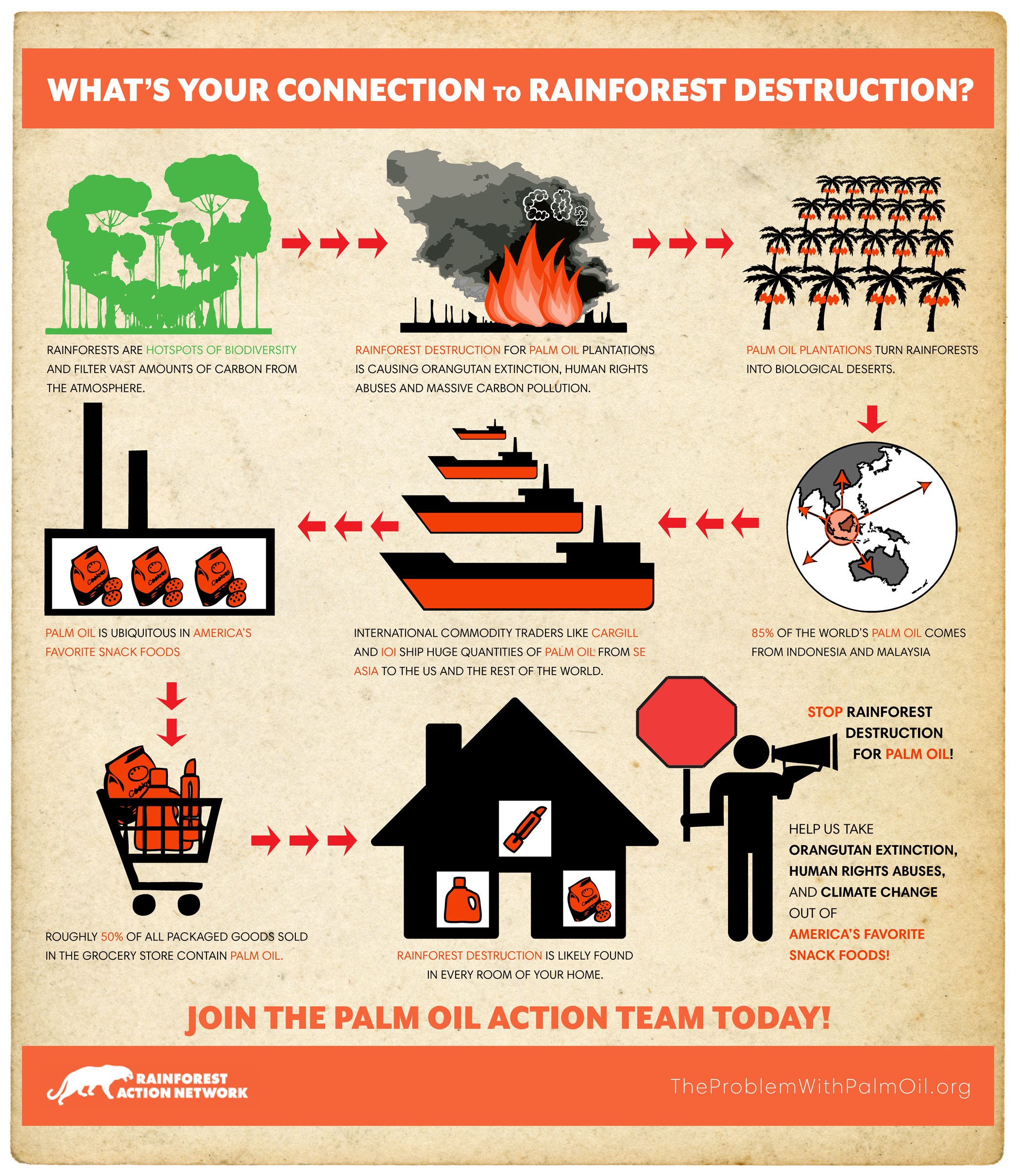 Conflict Palm Oil Supply Chain
