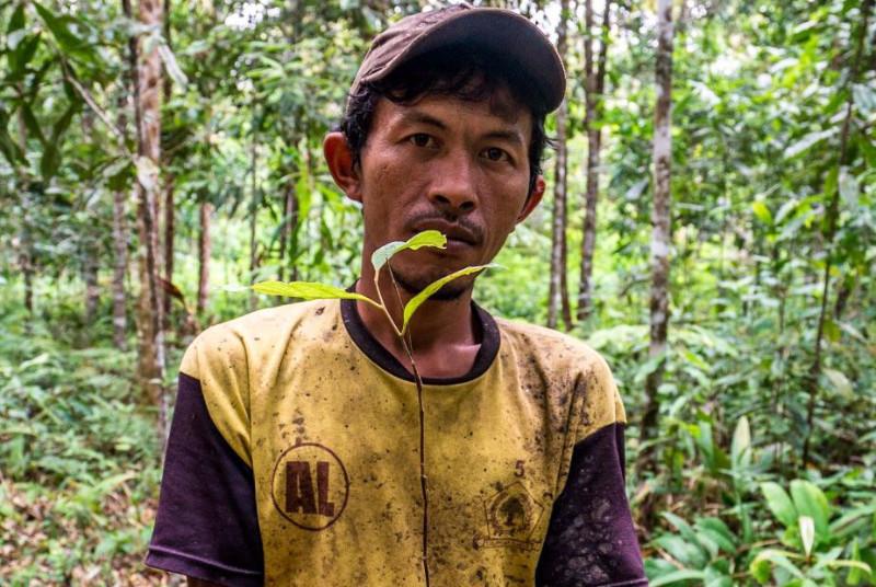 Sarip Simamora, Aek Lung, North Sumatra, Indonesia